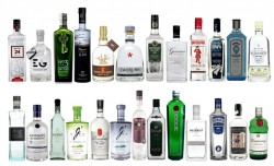 30 gins